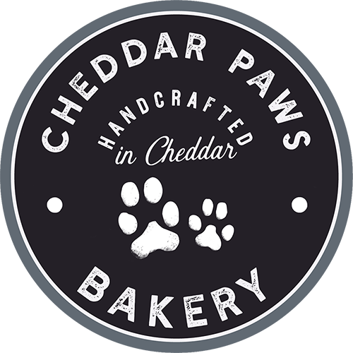 Cheddarpaws-web2